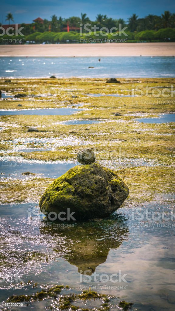 Zen-like Stones Covered with Moos on Beach during Low Tide, Nice Water Reflection, Nusa Dua, Bali, Indonesia stock photo