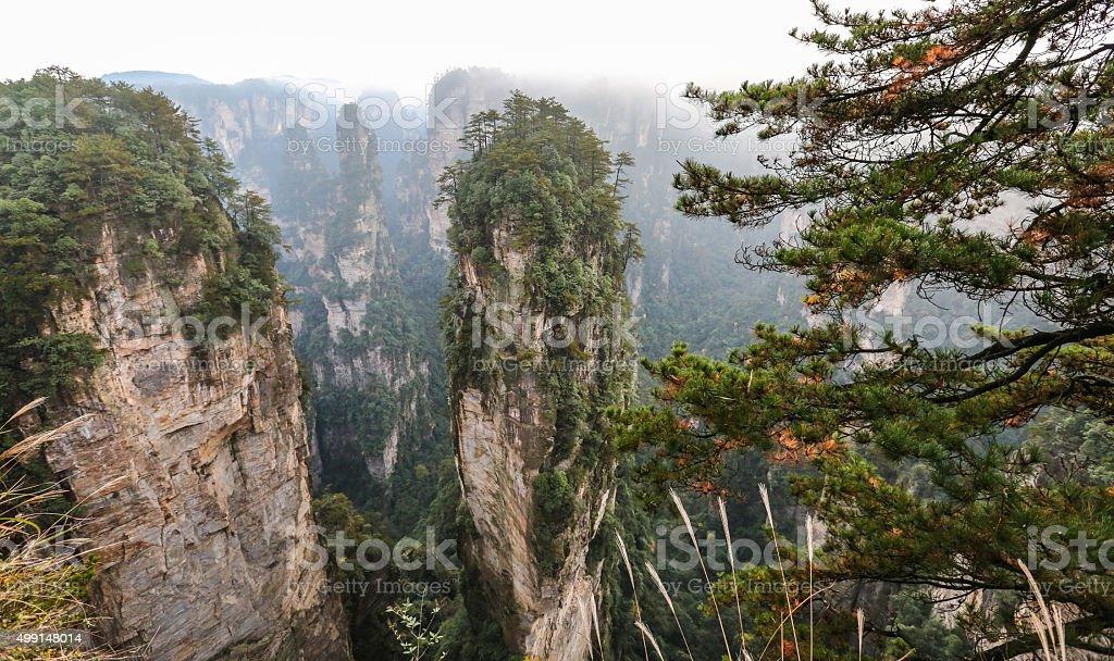 Zhangjiajie in China stock photo