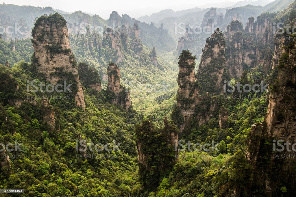 Zhangjiajie mountains stock photo