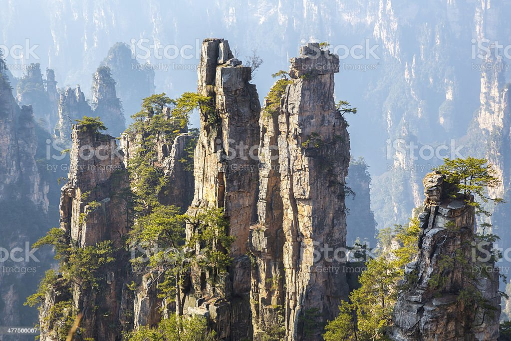 Zhangjiajie National forest China stock photo