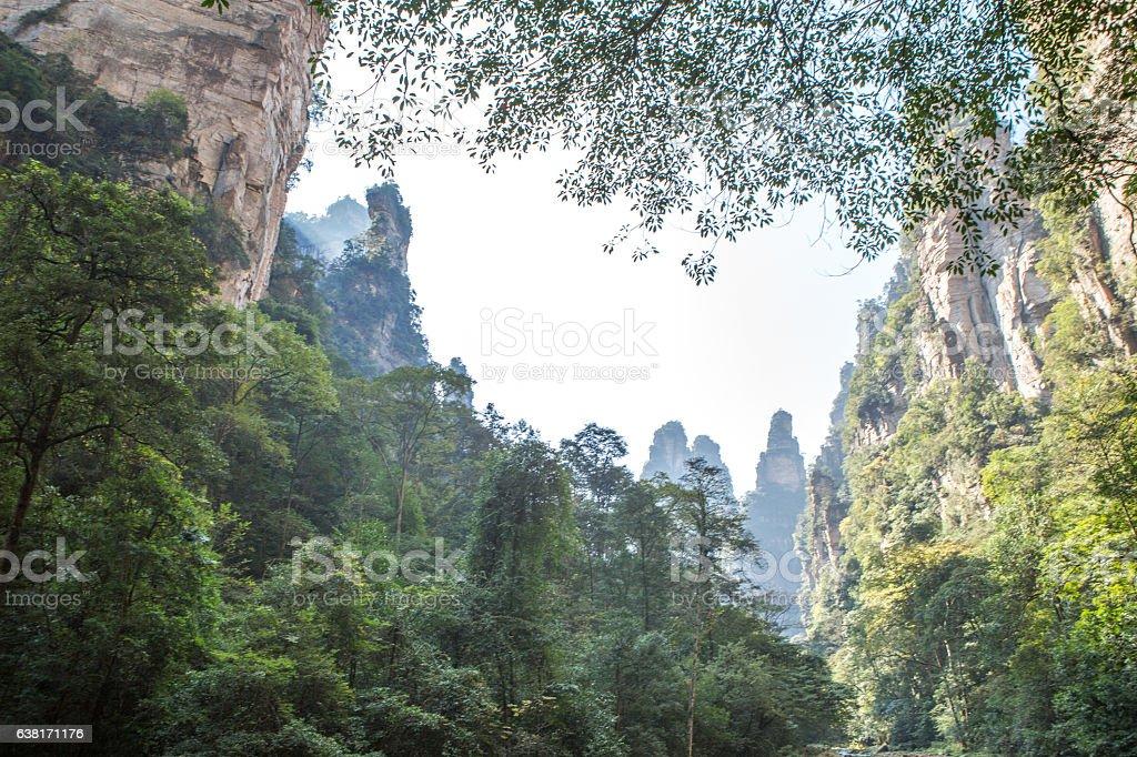 Zhangjiajie National Forest Park, China stock photo