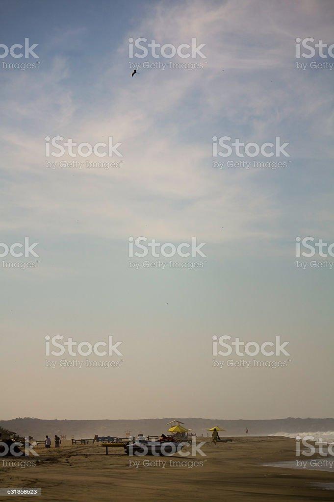 Zicatela beach eagle sky boats huts Puerto Escondido stock photo