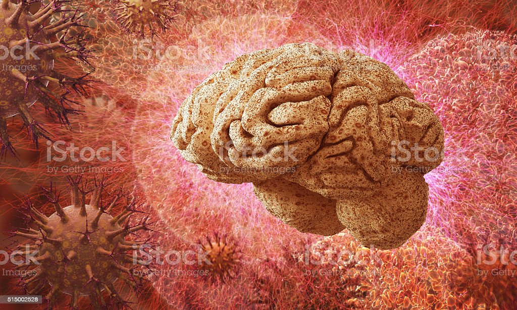 Zika virus in a brain stock photo