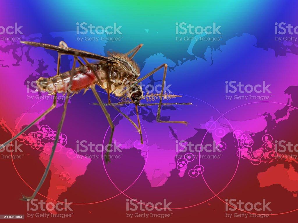 Zika virus spread stock photo