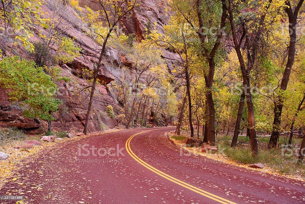 Zion Canyon Road royalty-free stock photo