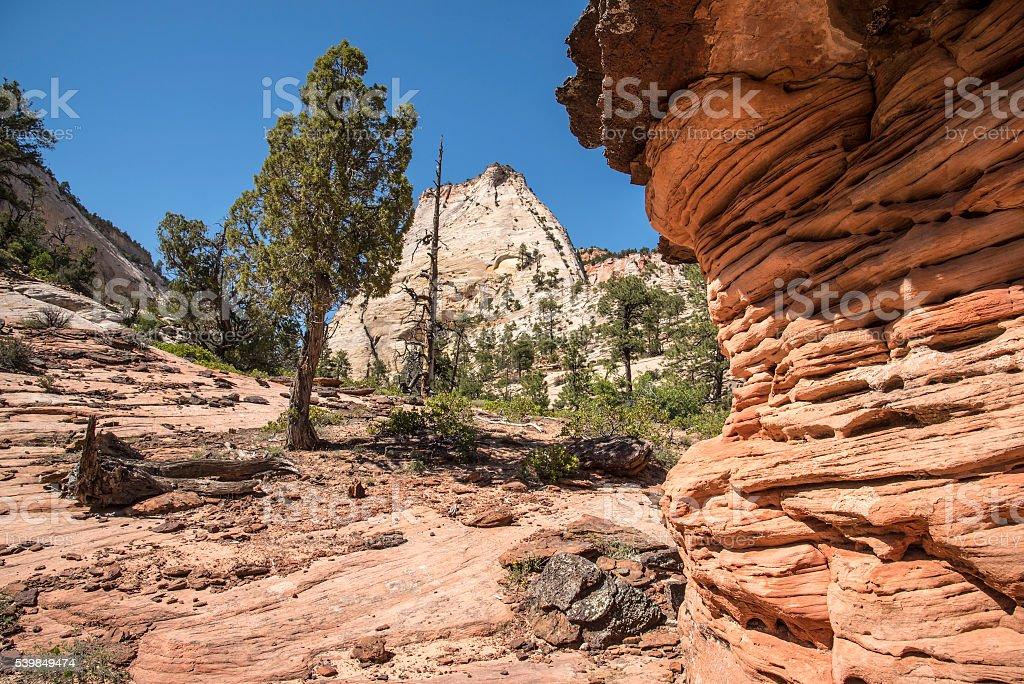 Zion landscape stock photo
