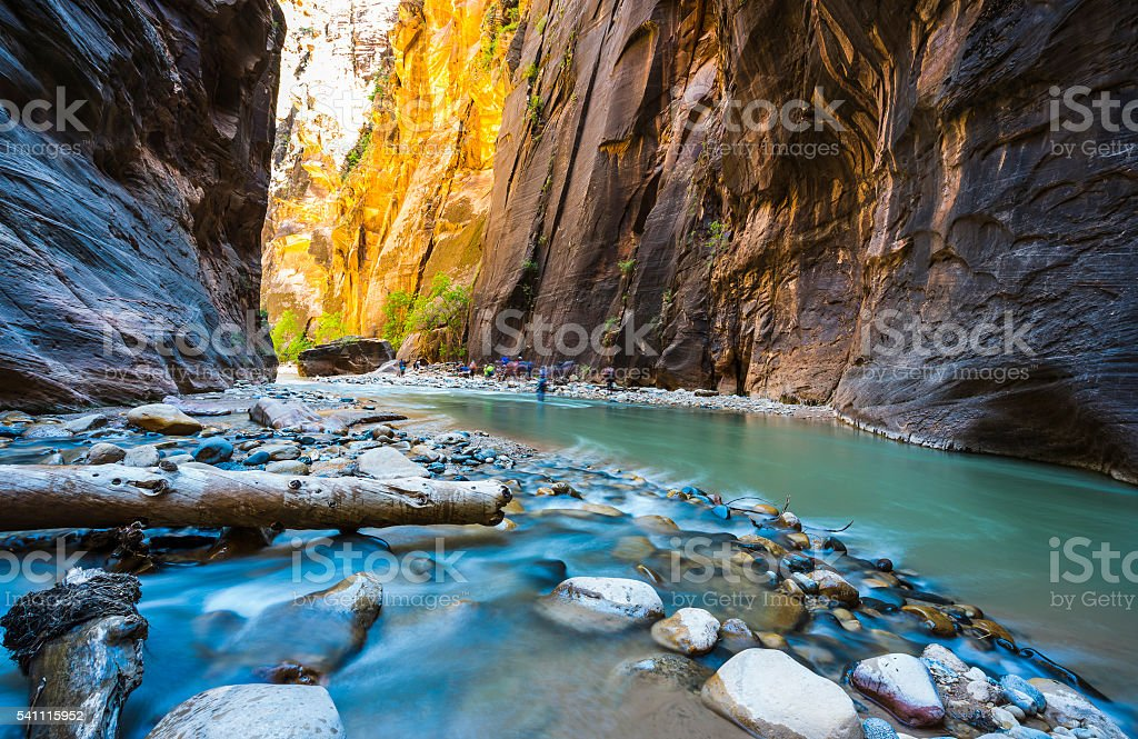 zion narrow  with vergin river in Zion National park. stock photo