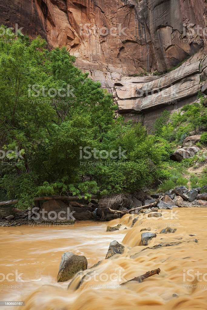 Zion River royalty-free stock photo
