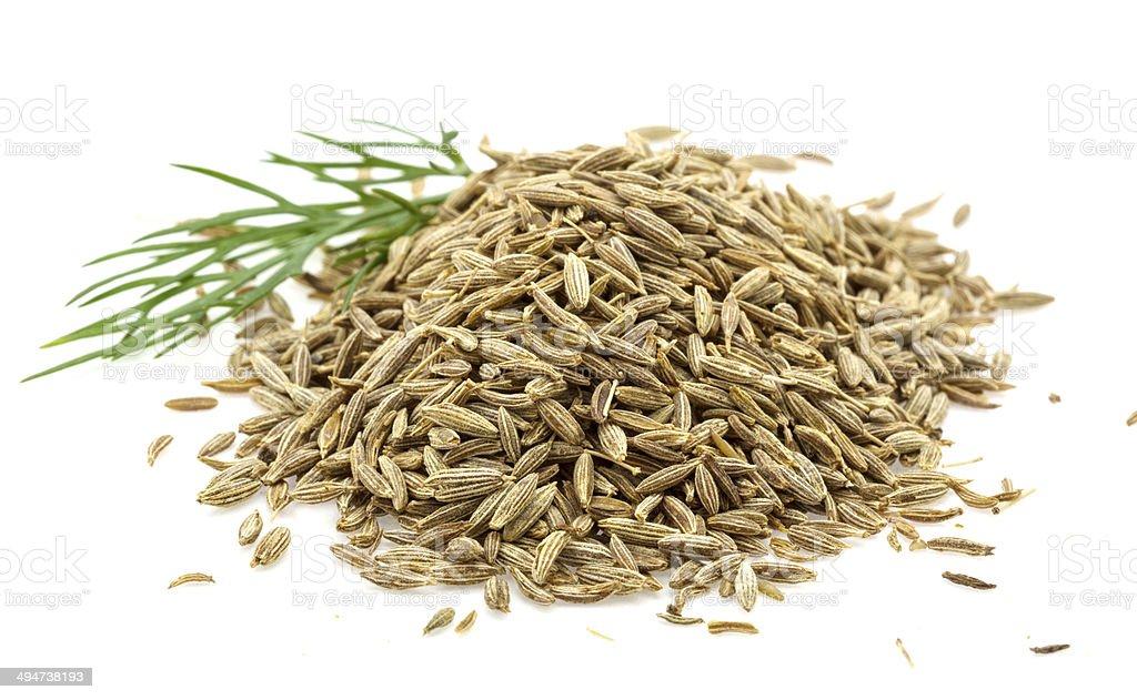 Zira seeds stock photo