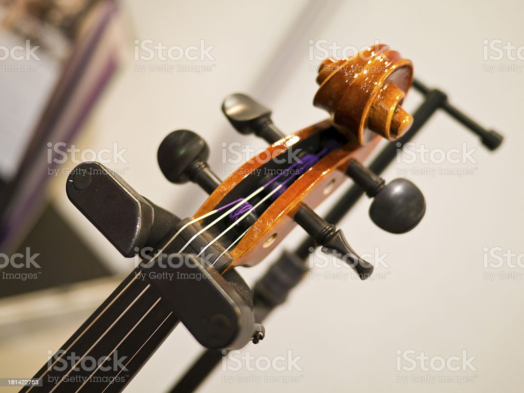 zither fragment royalty-free stock photo