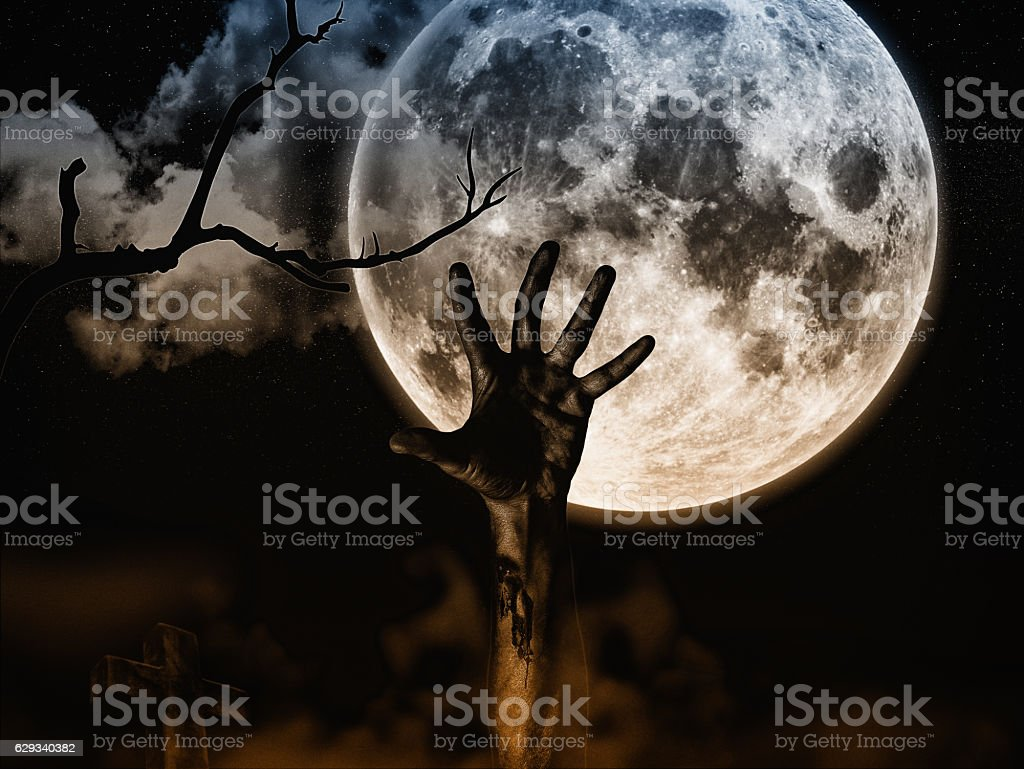 Zombie comes out of the grave stock photo
