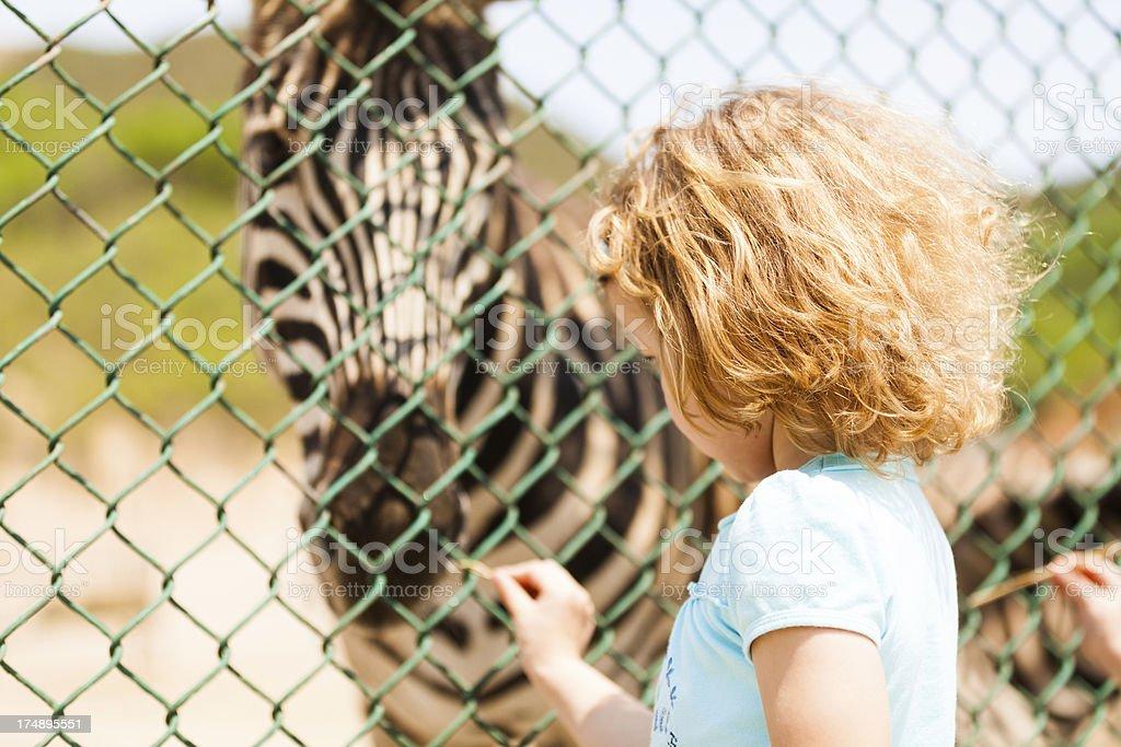 Zoo stock photo
