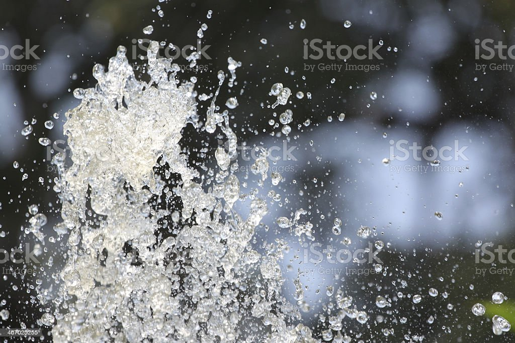 Zoom The Water Spread. royalty-free stock photo