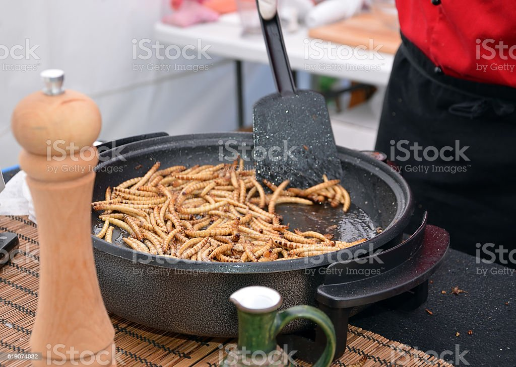 zophobas morio worms food frying on the pan stock photo