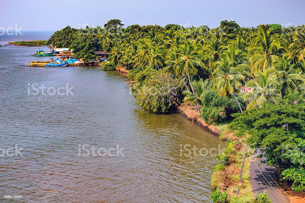 Zuari River Bank with tropical forest, Goa, India stock photo