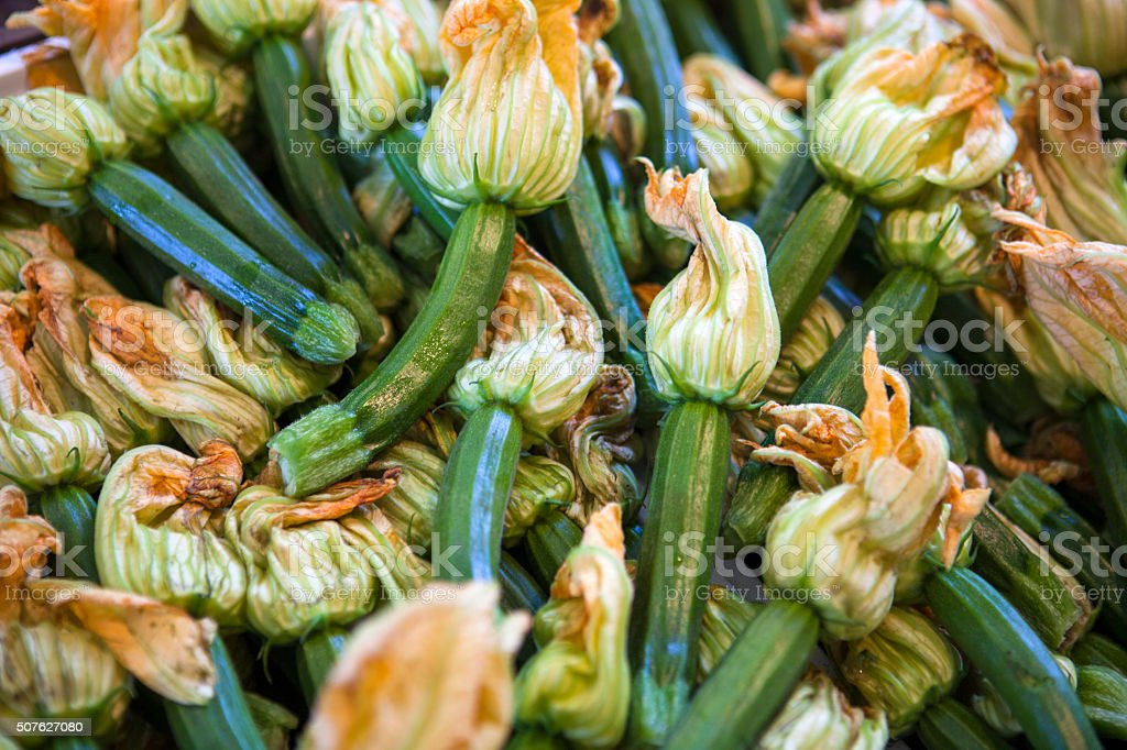 Zucchini Blossoms stock photo