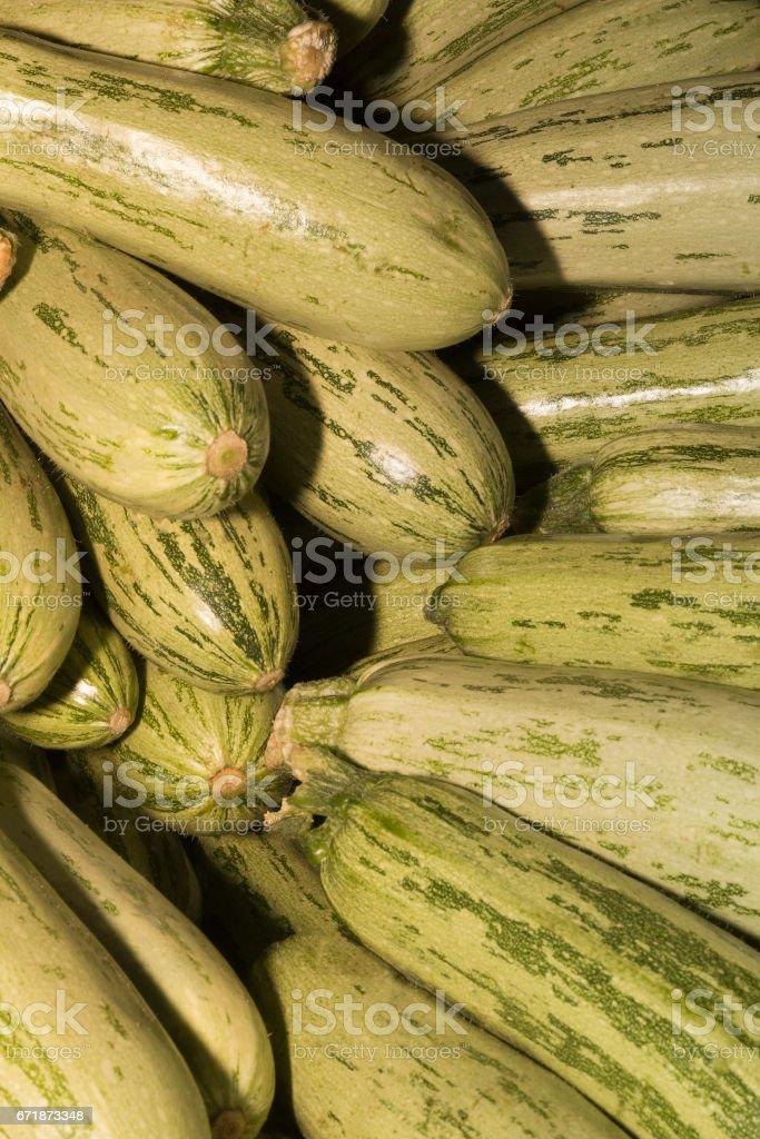 Zucchini or courgette stock photo