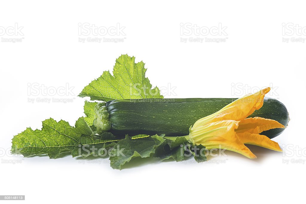 Zucchini with leaves and flowers royalty-free stock photo
