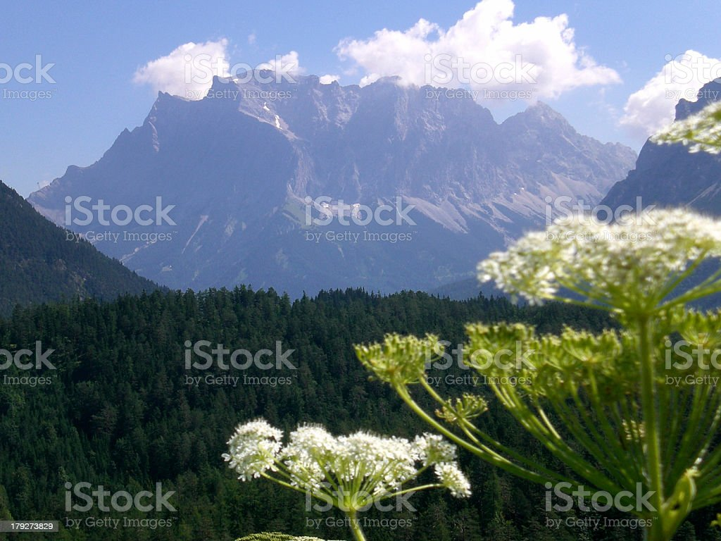 Zugspitze vom Fernpass stock photo
