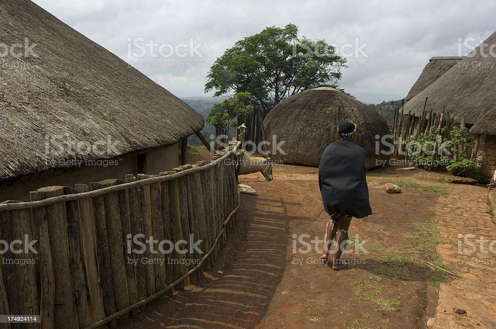 Zulu Village stock photo