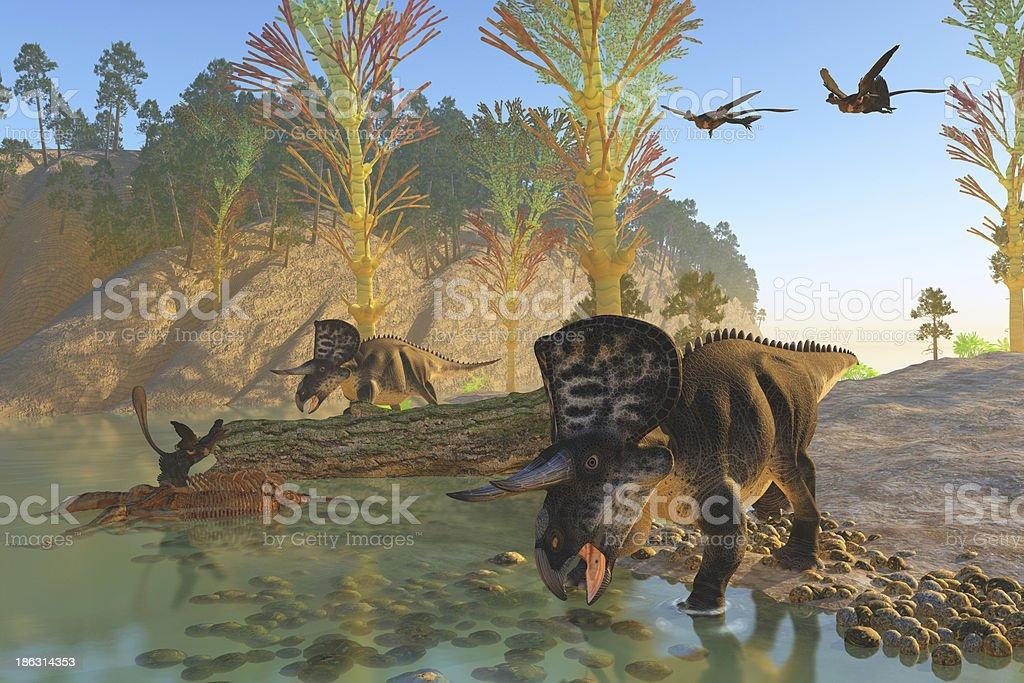 Zuniceratops River stock photo