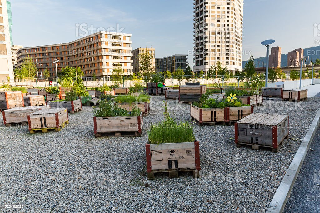 Zurich at evening of July 4, 2015 stock photo
