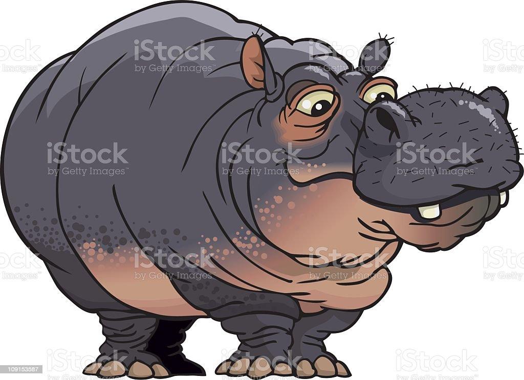 HIPPO vector art illustration