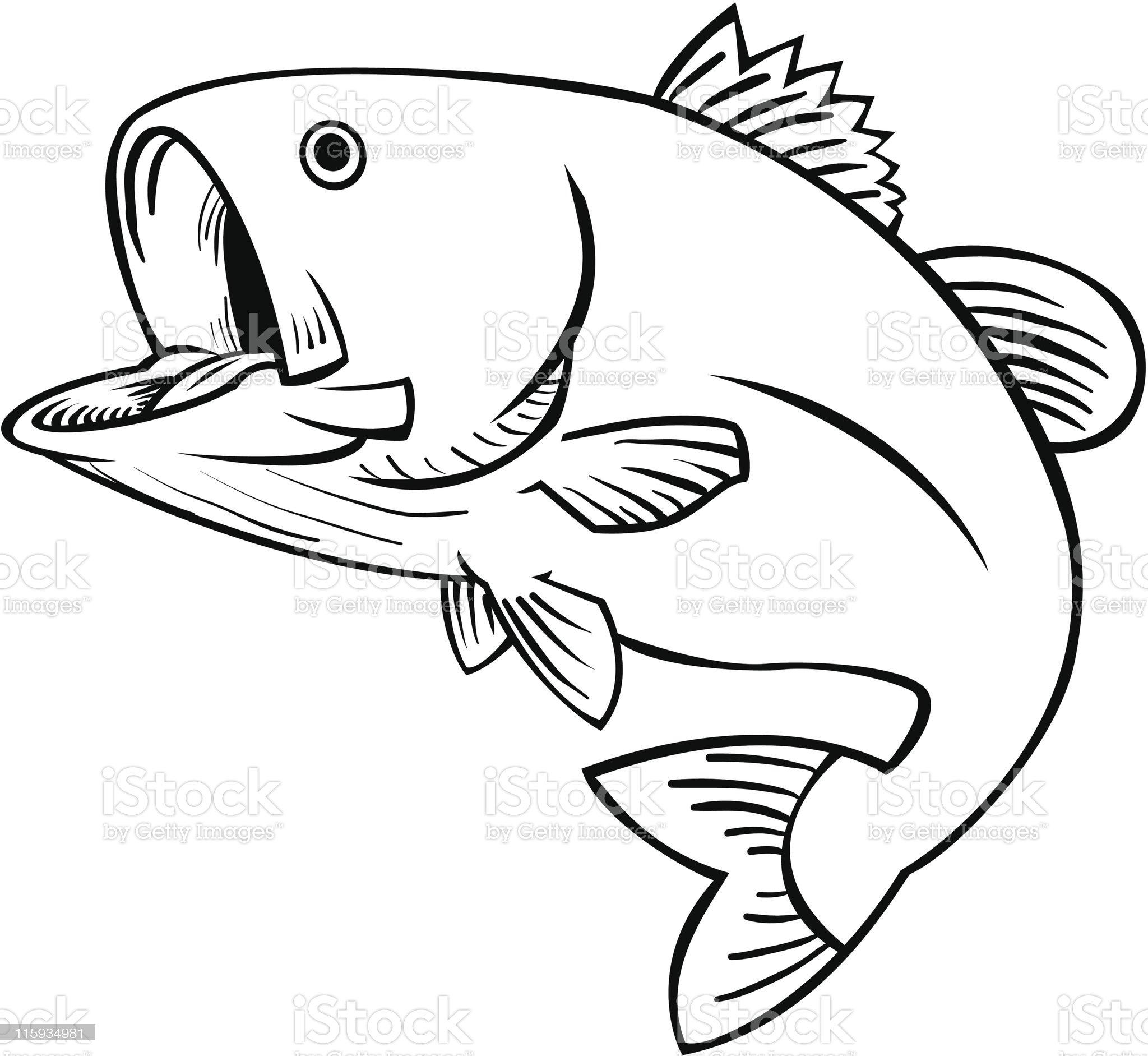 JUMPING FISH royalty-free stock vector art