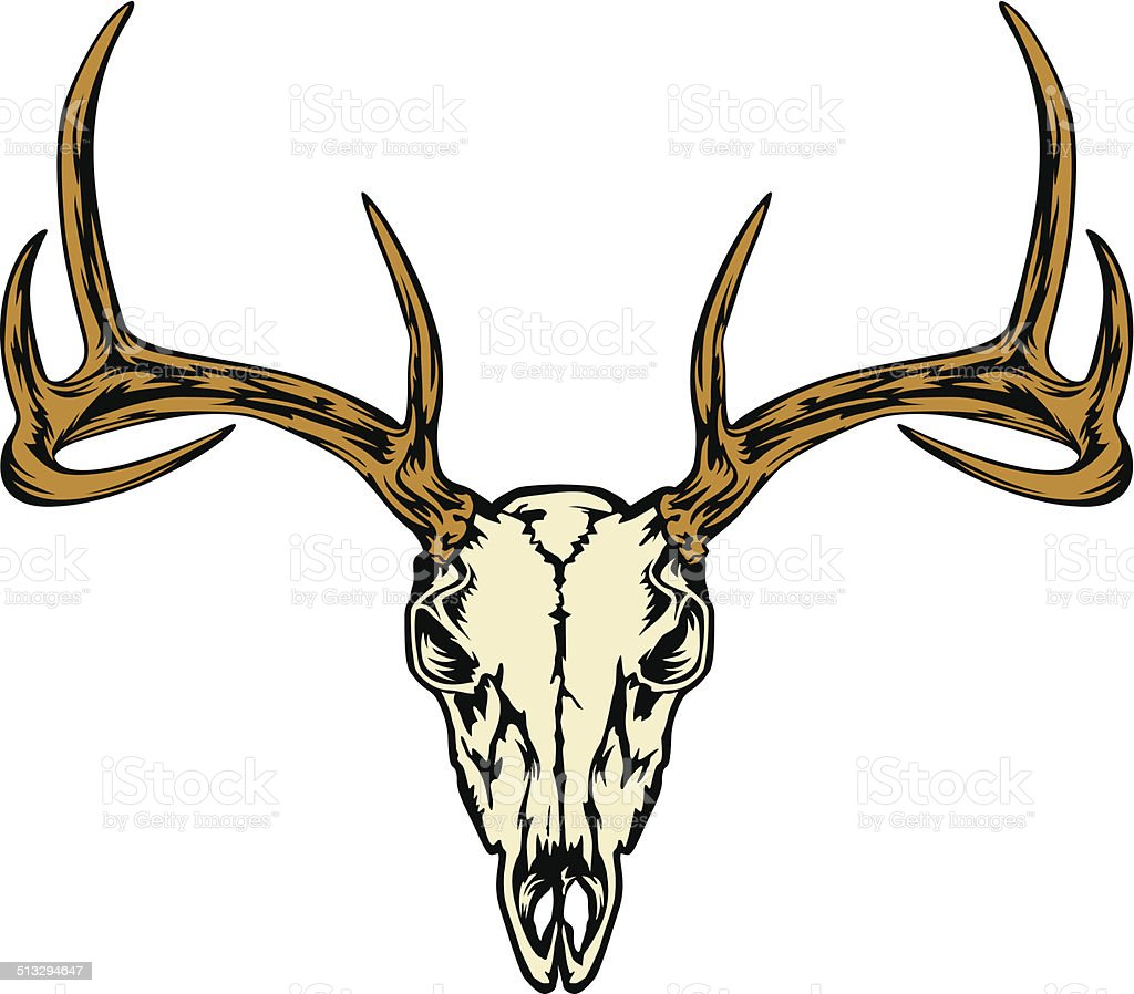 DEER HEAD SKULL vector art illustration