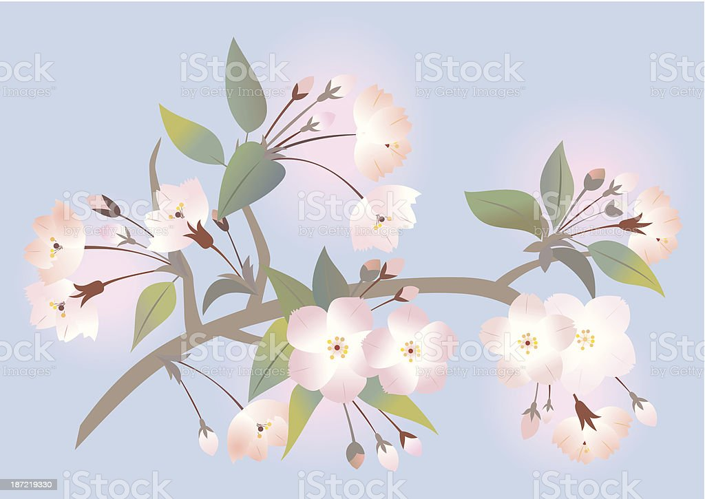 Abstract apple tree branch royalty-free stock vector art