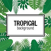 Abstract background with tropical leaves. Jungle pattern