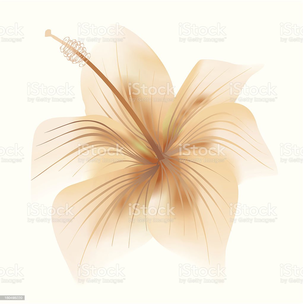 abstract flower vector royalty-free stock vector art