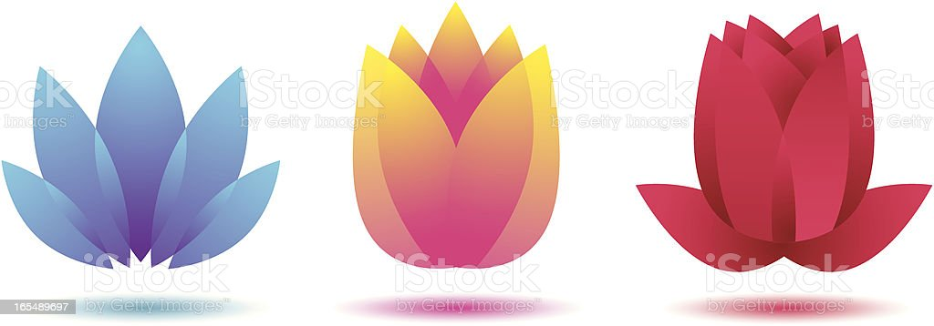 Abstract flowers lotus tulip rose vector art illustration
