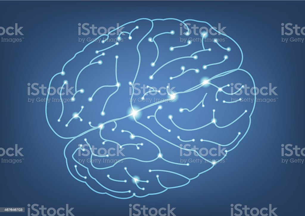 Abstract Left and Right brain function illustration royalty-free stock vector art