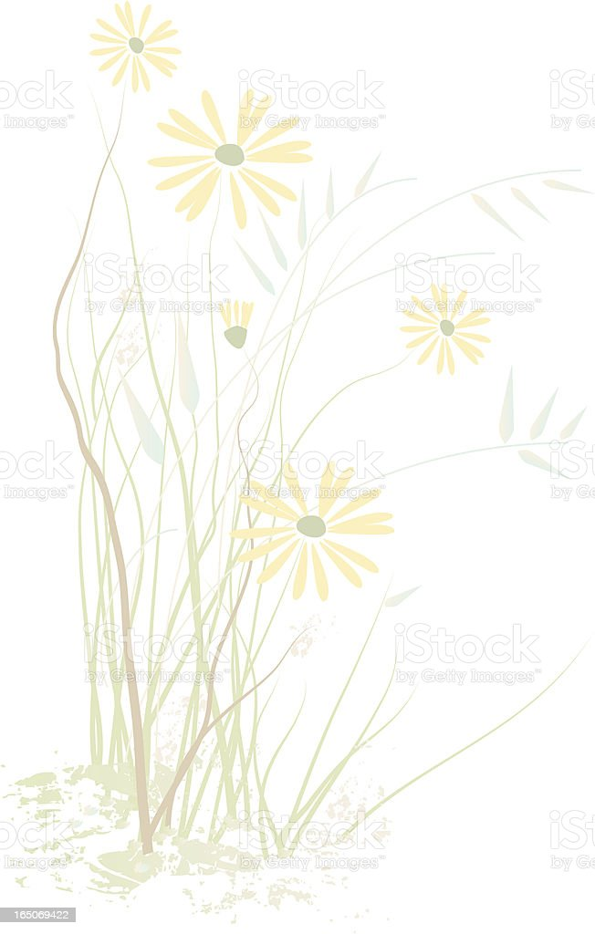 Abstract prairie wildflowers vector art illustration