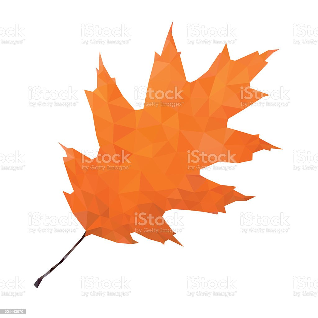 Abstract Single Oak Leaf vector art illustration