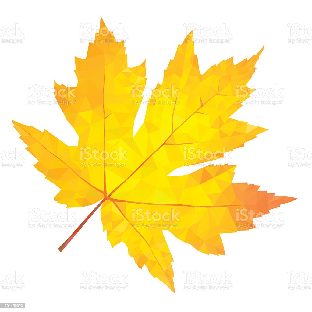 Abstract single yellow maple leaf vector art illustration