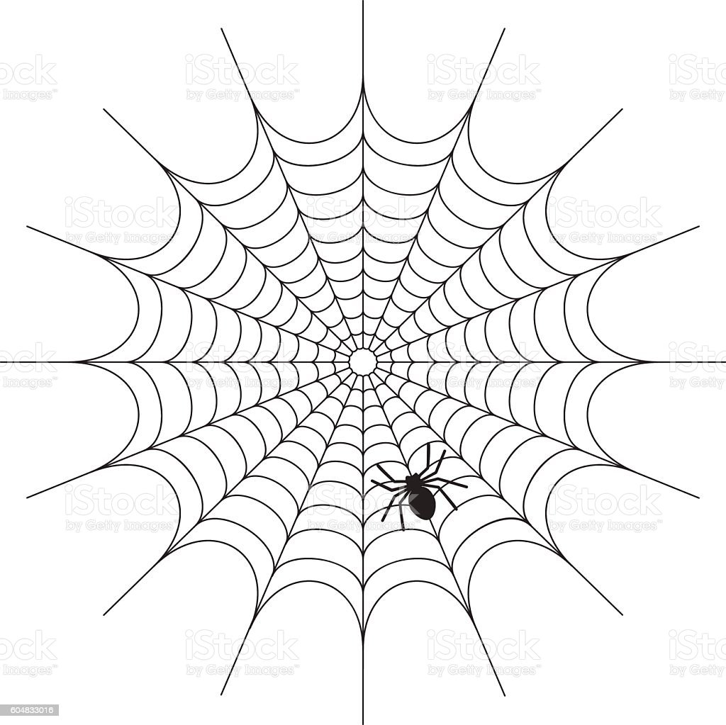 Abstract Spiderweb on white background vector art illustration