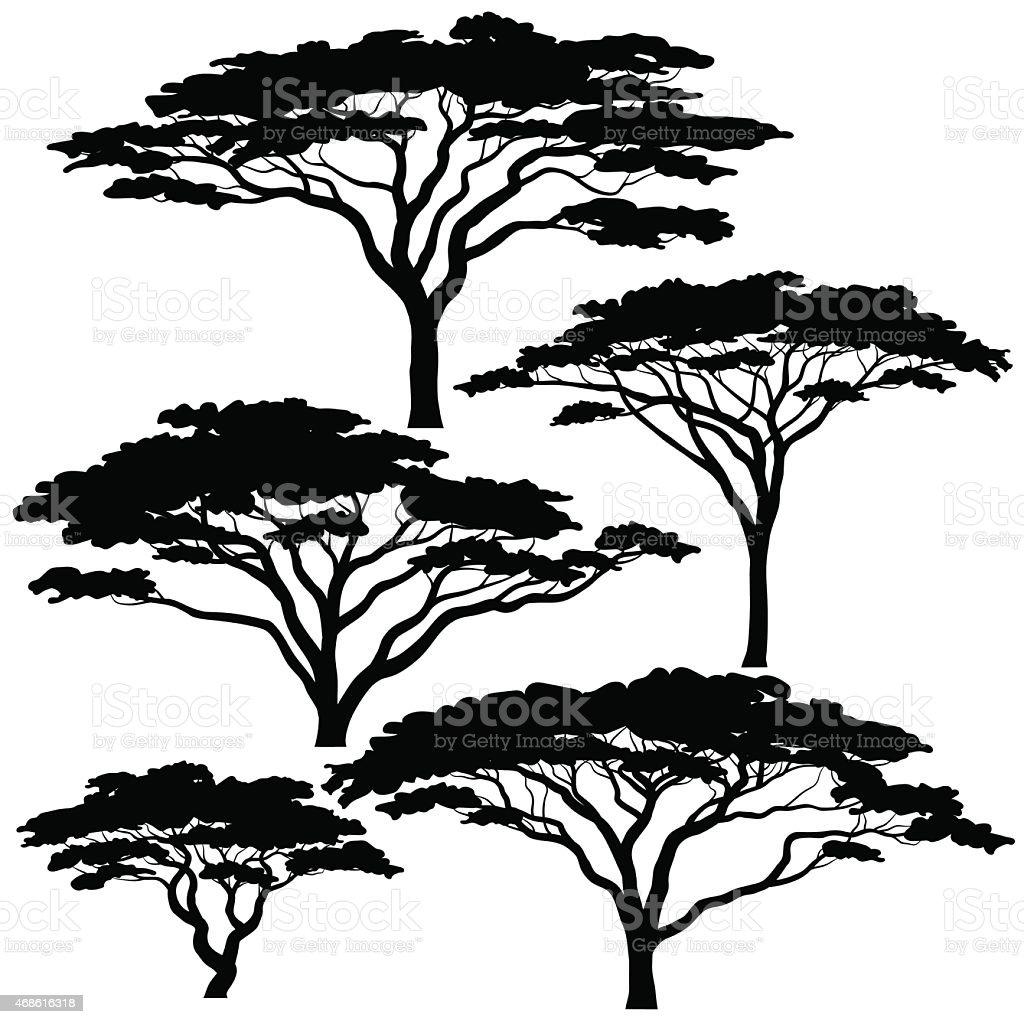 Acacia tree silhouettes vector art illustration