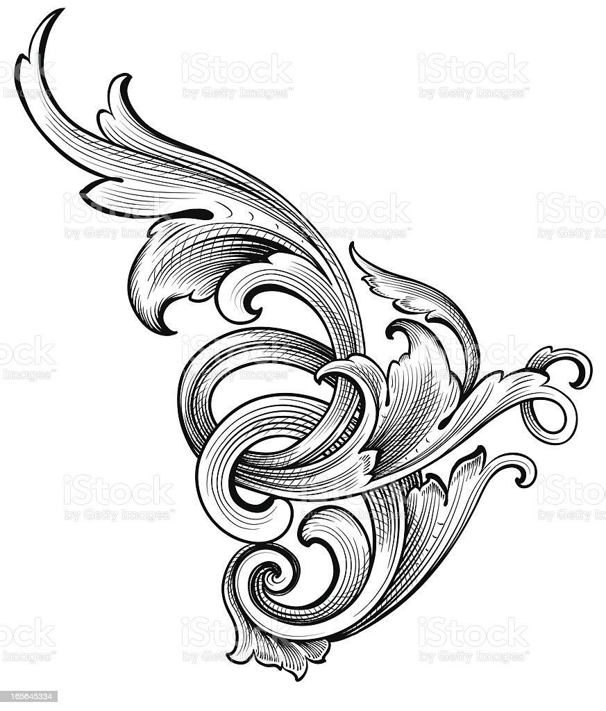 Acanthus Growth vector art illustration