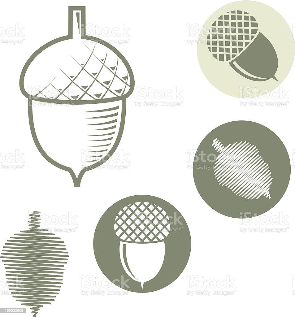 Acorn - vector symbols royalty-free stock vector art