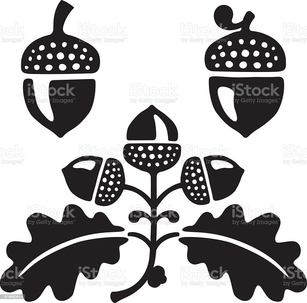 Acorns and oak leaves with acorns. vector art illustration