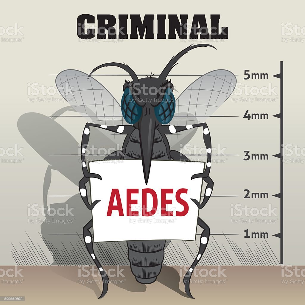 Aedes aegypti mosquitoes sting in jail, holding poster vector art illustration