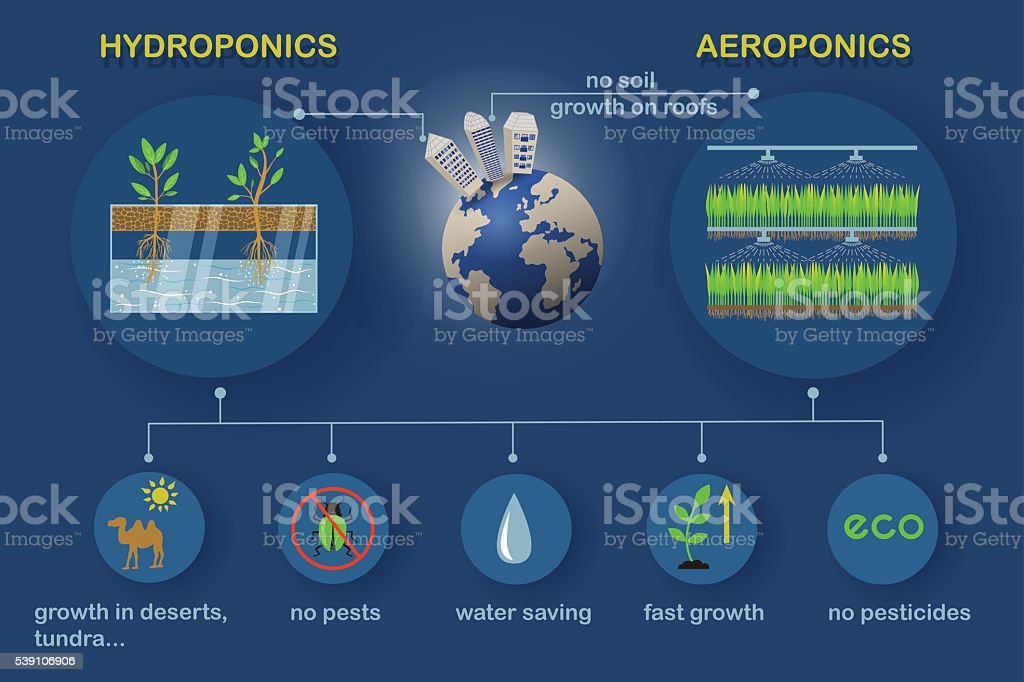 Aeroponic and hydroponic systems vector art illustration