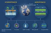 Aeroponic and hydroponic systems