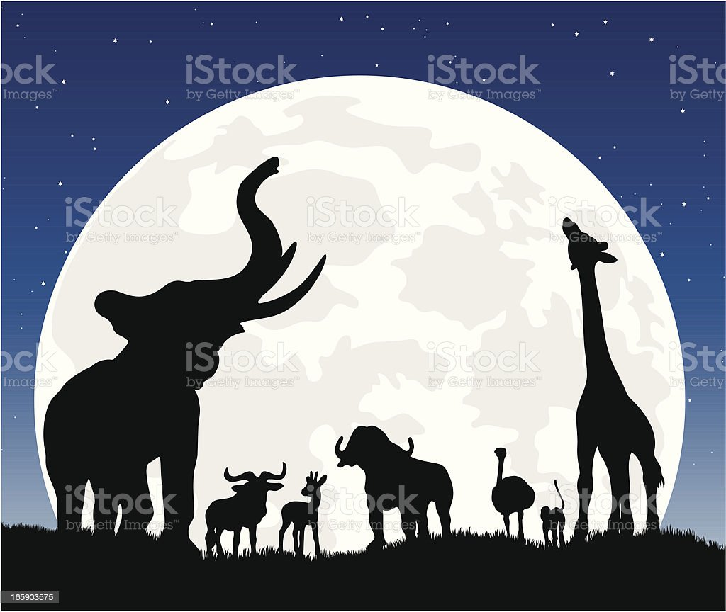 African animal silhouette safari at night with moon vector art illustration