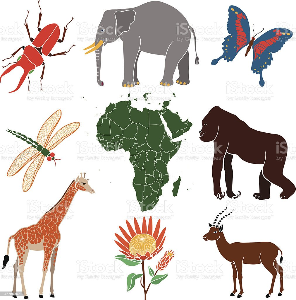 A vector illustration of african animals and insects.