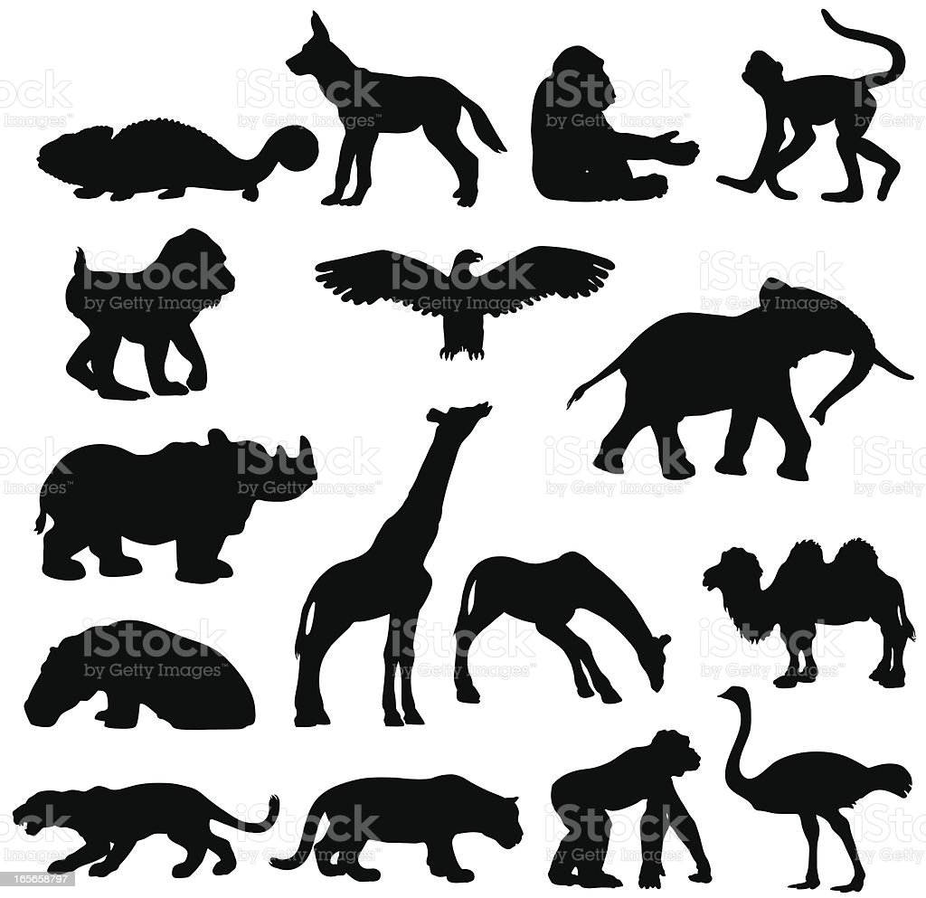 African animals silhouette collection vector art illustration