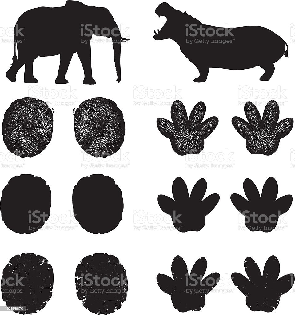 African Elephant and Hippopotamus Tracks royalty-free stock vector art