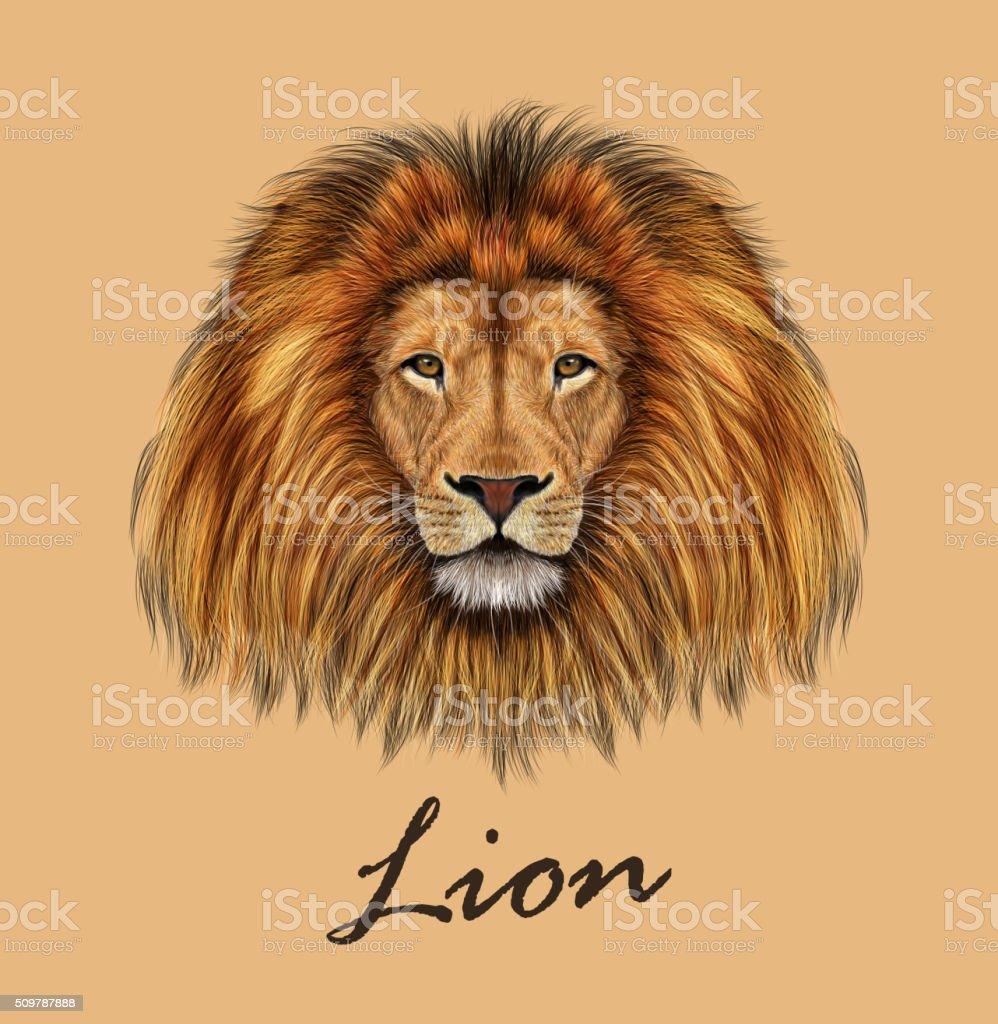 African Lion Portrait vector art illustration
